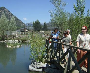 Centre de Fauna del Pont de Suert